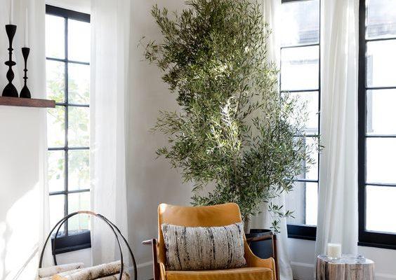 Cozy Reading Corner with Tree