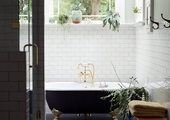 Black and White Bathroom with Greenery