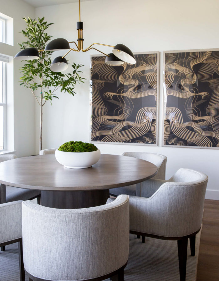 Transitional Design Neutral Colors & Modern Lighting